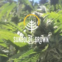 sunboldt grown logo