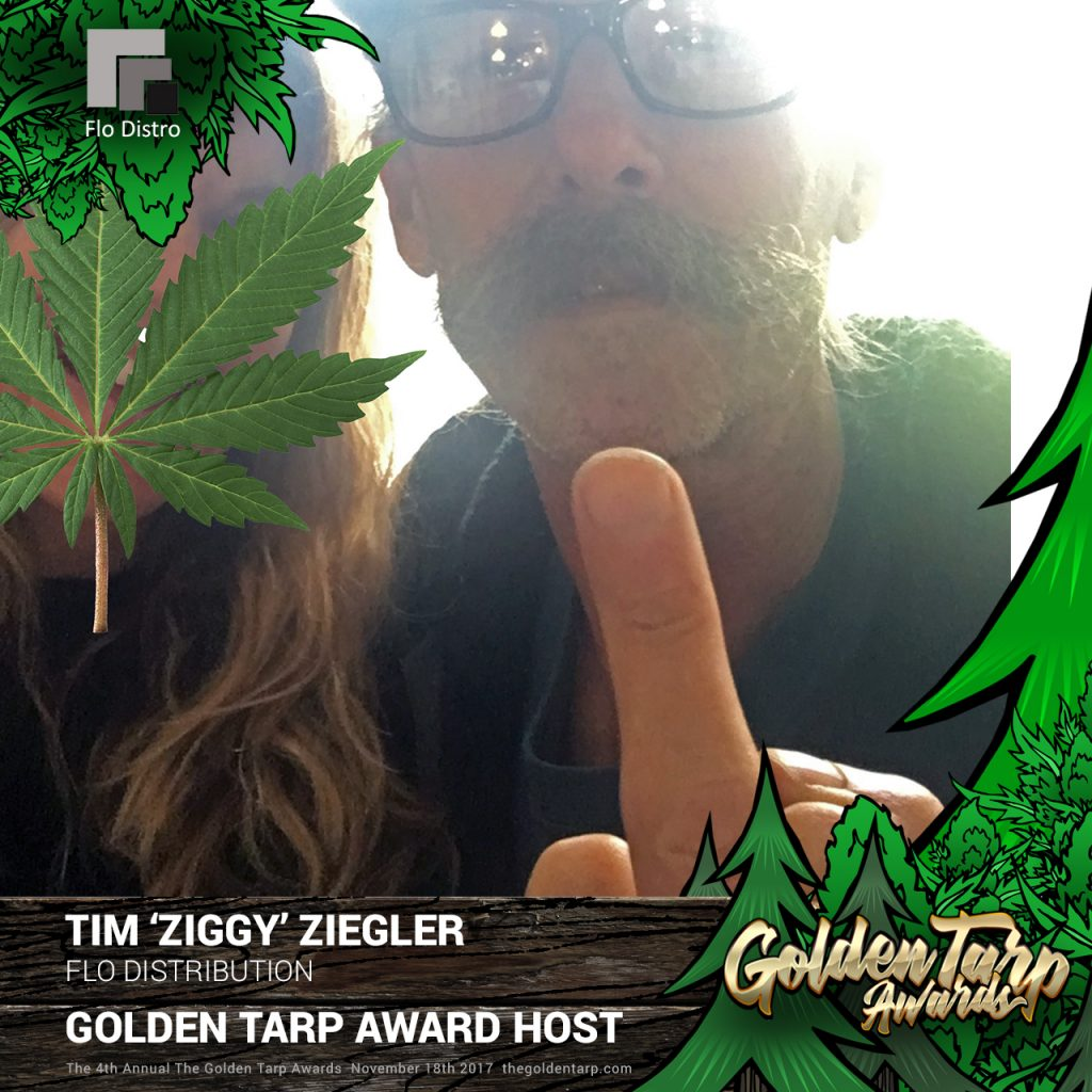 Ziggy - Host at The Golden Tarp Award